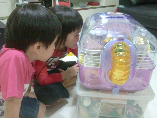 XX and YH looking at what Winter is doing in the cage