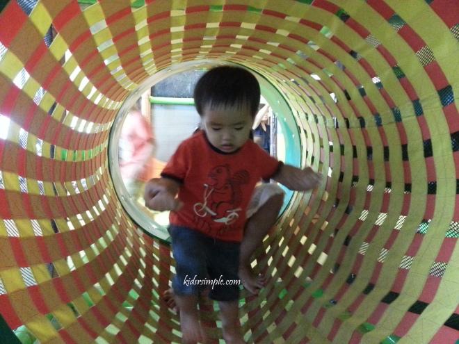 Canopy Playground 7