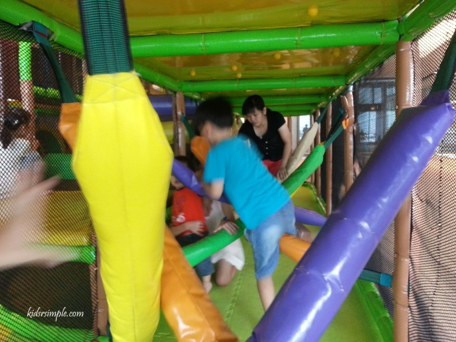 Canopy Playground 8