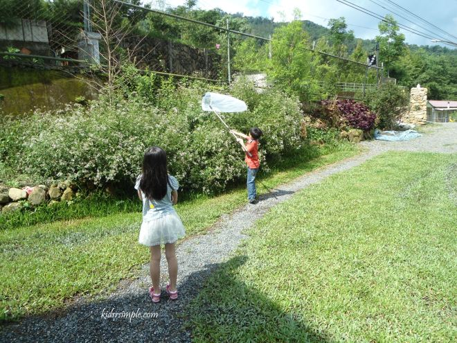 The kids were catching butterflies