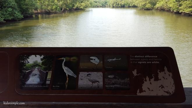 Bird info