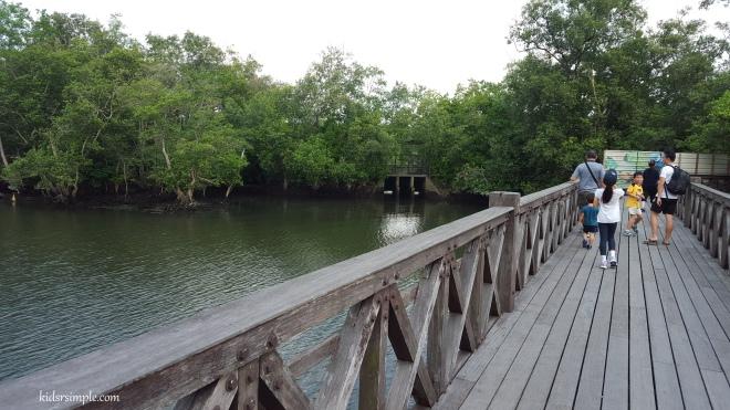 Migratory Bird Trail 2