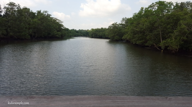 Migratory Bird Trail